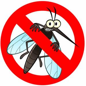 Dezinsekcija komaraca na području grada Hrvatske Kostajnice